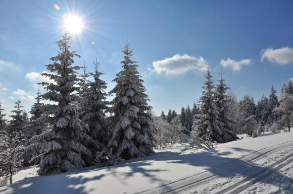 Wintersonne im Thüringer Wald